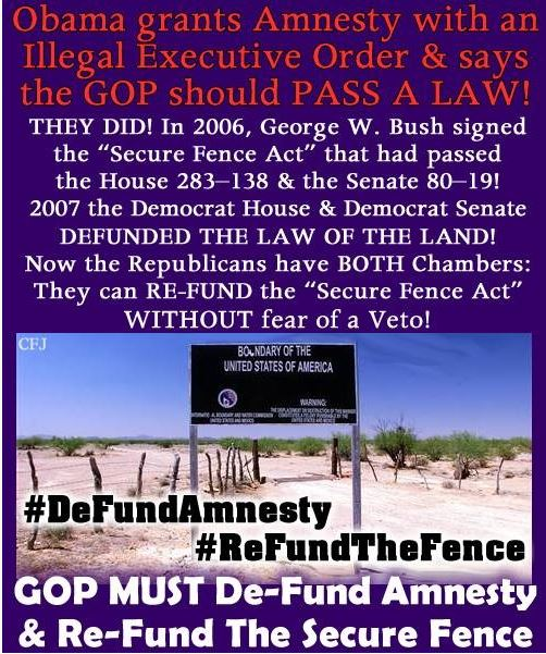 DeFund Amnesty.  ReFund the fence