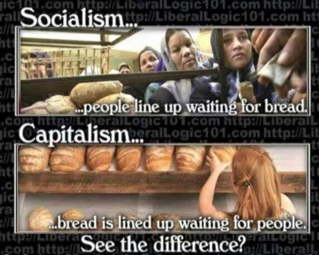 difference between capitalism and socialism pdf