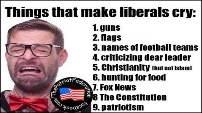 things that make liberals cry