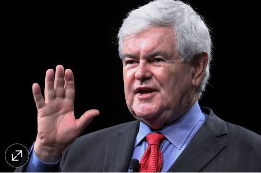 Newt Gingrich WSJ article